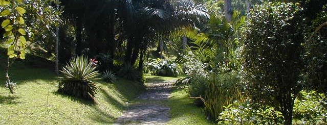 Castleton Botanical Gardens is one of Guide to the Best of Island, Jamaica.