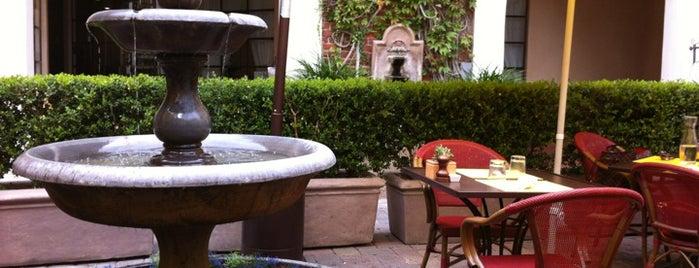Scarlett Begonia is one of Santa Barbara.