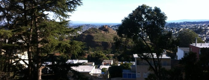 Buena Vista Park is one of Haight-Ashbury.