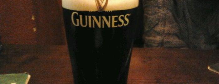 Irish Pub The James Joyce is one of Bira böyle içilir.