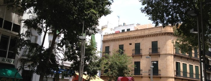 Alfalfa Square is one of Hipster Seville.