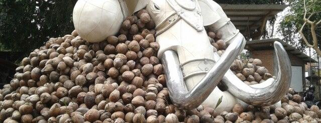 Taman Budaya Yogyakarta is one of Visited Places in Yogyakarta :).