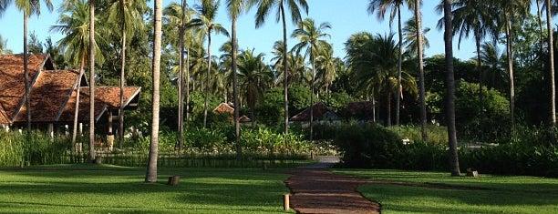 Evason Hua Hin is one of Hotel.