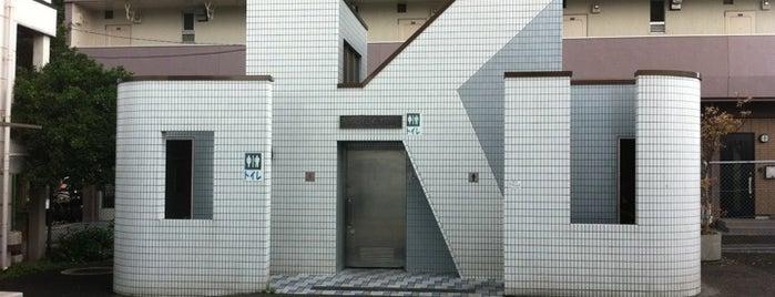 Oku Station is one of 東京近郊区間主要駅.