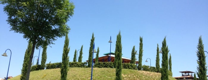 Parco di San Donato is one of Florence Bars, Cafes, Food, POI.