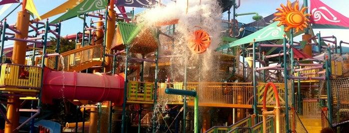 Aquatica, SeaWorld's Waterpark Orlando is one of Dicas de Orlando..