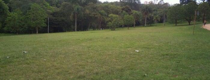 Parque do Carmo - Olavo Egydio Setúbal is one of 100+ Programas Imperdíveis em São Paulo.