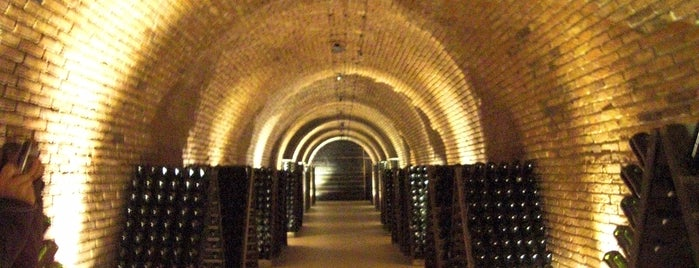 Bodegas Chandon is one of Mendoza.