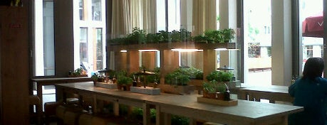 Vapiano is one of Europe 2013.