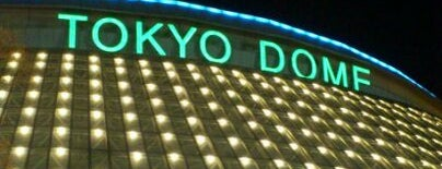 Tokyo Dome is one of Best Live Music Venues.
