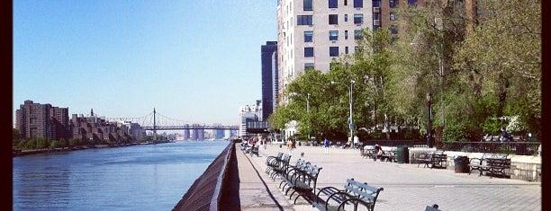 Carl Schurz Park is one of New York.