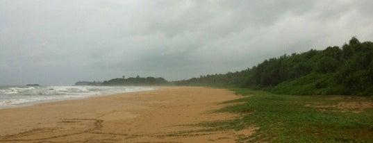 Bentota Beach is one of Шри-Ланка.