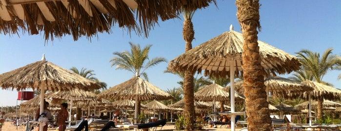 Hilton Fayrouz Resort is one of Be Charmed @ Sharm El Sheikh.