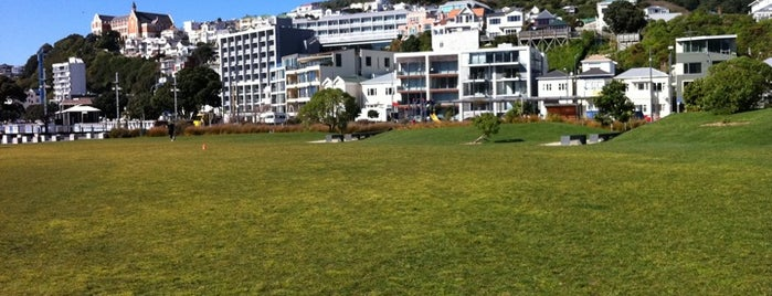 Waitangi Park is one of NZ to go.