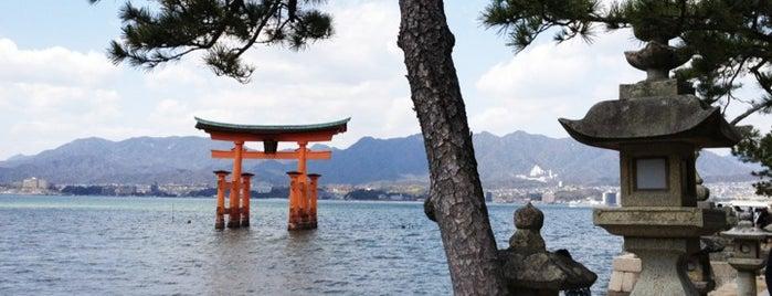 Miyajima (Itsukushima) is one of 行った所&行きたい所&行く所.