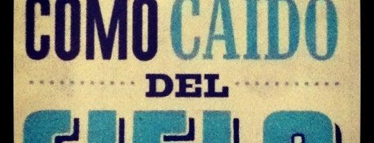 Cielito Querido Café is one of ¡Cui Cui ha estado aquí!.