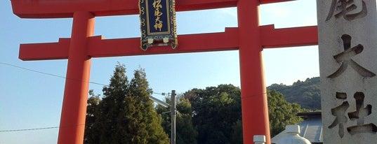 Matsunoo-Taisha Shrine is one of 神社.