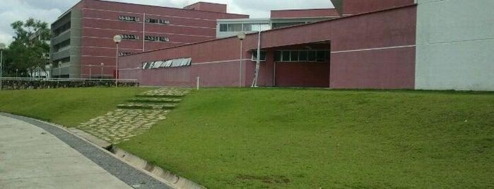 Biblioteca da Faculdade de Ciências Econômicas (Face) is one of Campus.