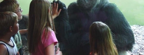 The Oklahoma City Zoo is one of Oklahoma City's Best!  #visitUS.
