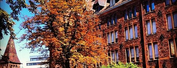 Hoepfner Biergarten is one of Karlsruhe + trips.