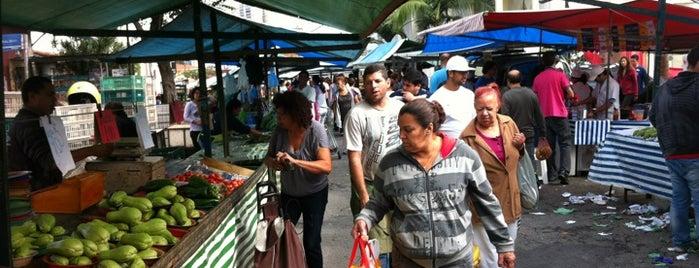 Feira de Domingo - Campo Grande is one of visitas.