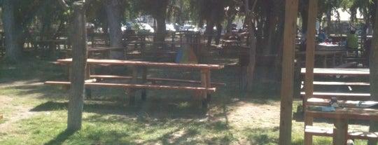 El Oasis is one of Campings.