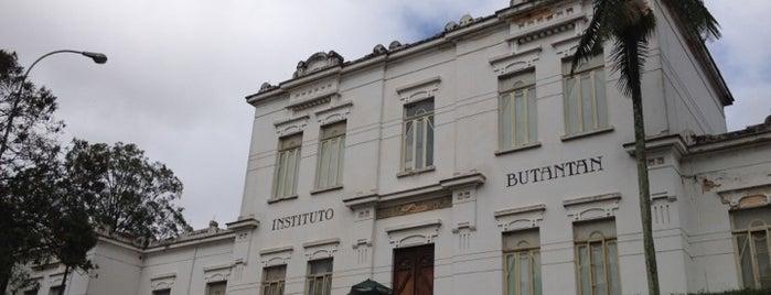 Museu Histórico Instituto Butantan is one of São Paulo - O que tem por perto?.
