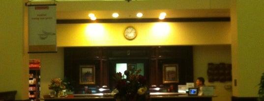 Hilton Garden Inn is one of My Favorites.