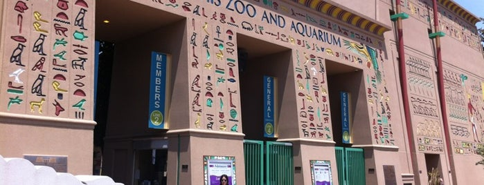 Memphis Zoo is one of Attractions to Visit.