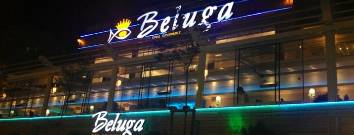 Beluga Fish Gourmet is one of Restaurants.