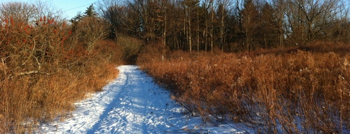 RBG North Shore Trails (York Rd. Terminus) is one of Outdoors.