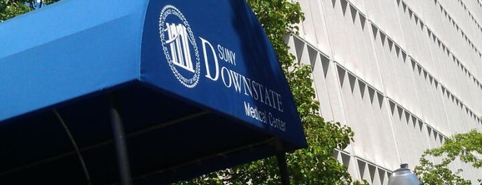 SUNY Downstate is one of NYC - Brooklyn Places.
