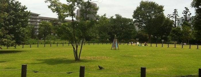 Nakameguro Park is one of Nakameguro.