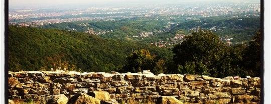 Medvedgrad is one of Castles in Croatia.
