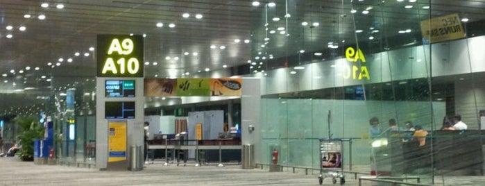 SIN Airport Gates