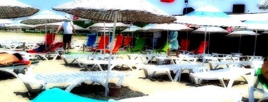 Şımarık Beach is one of AYVALIK #1 🏊🏄.