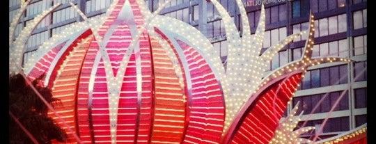Flamingo Las Vegas Hotel & Casino is one of Hotels I Enjoyed Staying At.