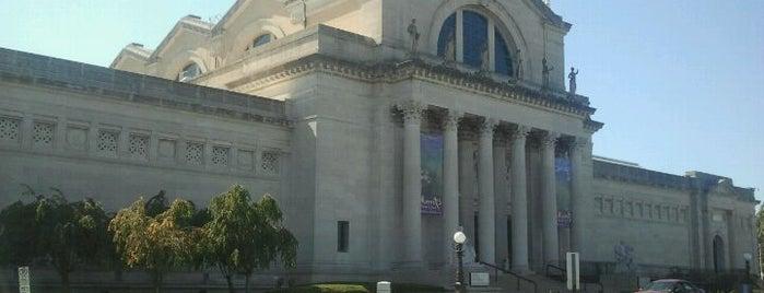 Saint Louis Art Museum is one of To Do w/ABC & XYZ.