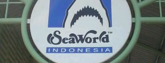 SeaWorld Indonesia is one of Ancol.