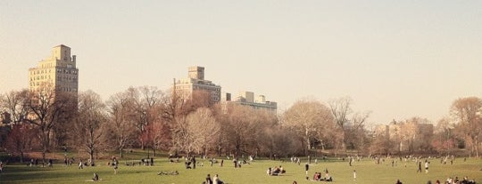Long Meadow is one of Park Highlights of NYC.