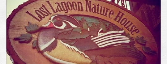 Lost Lagoon Nature House is one of Vancouver on the Cheap — Singles Edition.