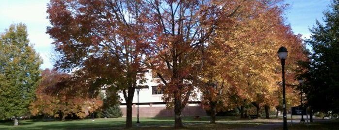 University of Maine is one of College Love - Which will we visit Fall 2012.
