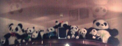 Панда / Panda is one of Free wi-fi places in Kiev..