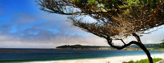 Carmel Beach City Park is one of San Francisco - May 2017.