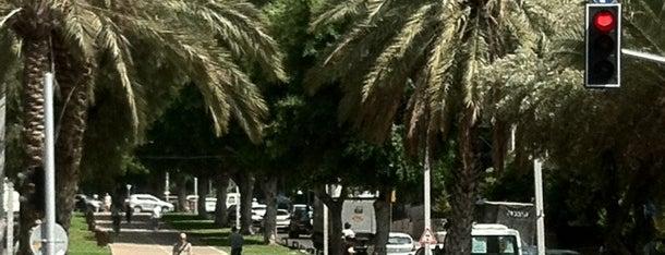 Rothschild Blvd. is one of Travel Guide to Tel Aviv.