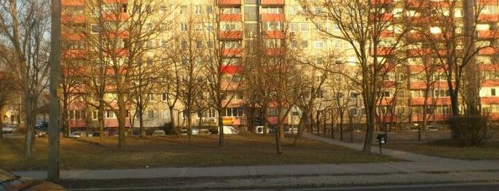 Albertfalva utca (17, 41, 47, 47B, 48, 56) is one of Budai villamosmegállók.