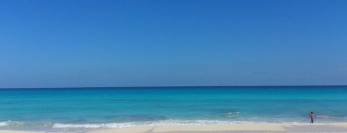 Playa Chac Mool is one of Mexico // Cancun.