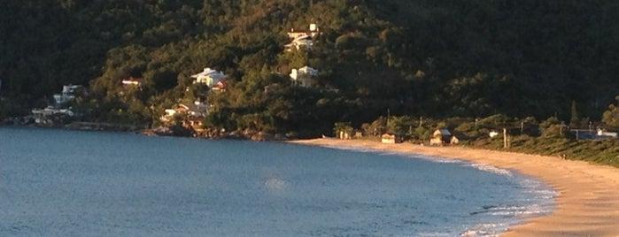Praia do Estaleirinho is one of Balneário Camboriú.