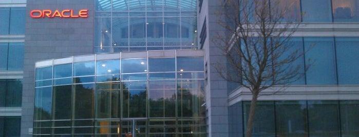 Oracle Belgium is one of Work.