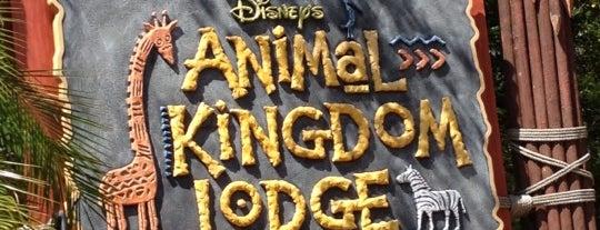 Disney's Animal Kingdom Lodge is one of Walt Disney World.